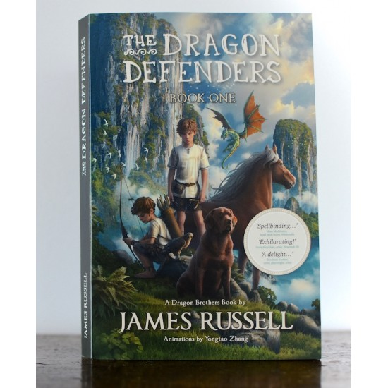 Dragon Brothers Books | Dragon Defenders Book 3 - An Unfamiliar Place